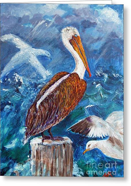 Brown Pelican With Gulls Greeting Card