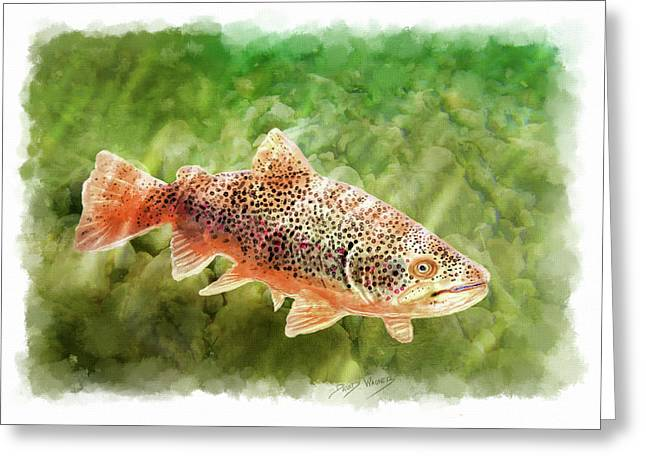 Brown Trout Greeting Card by David Wagner