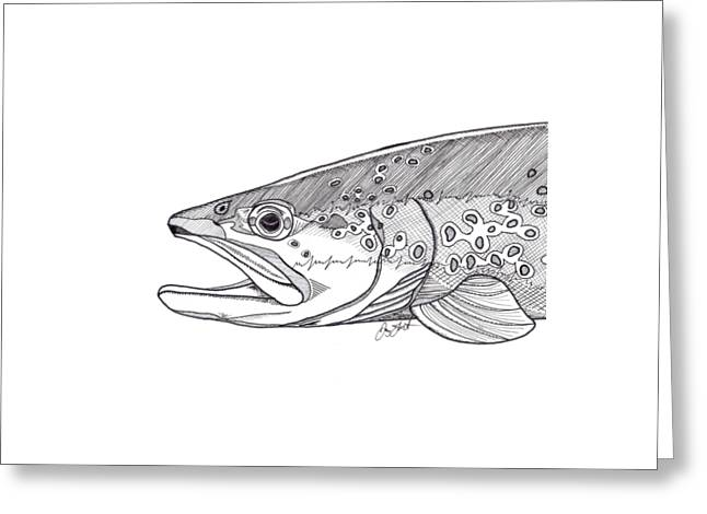 Brown Trout Greeting Card by Jay Talbot