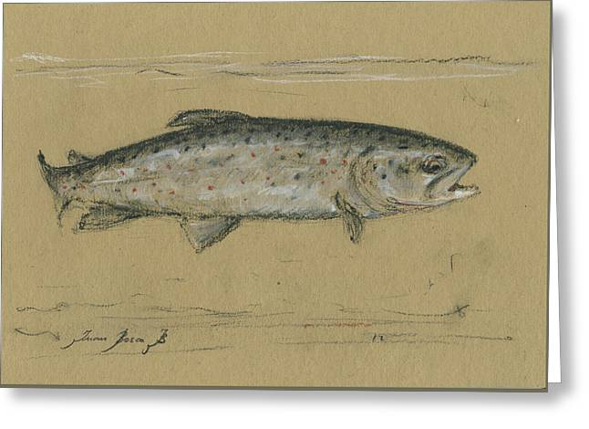 Brown Trout Greeting Card by Juan Bosco