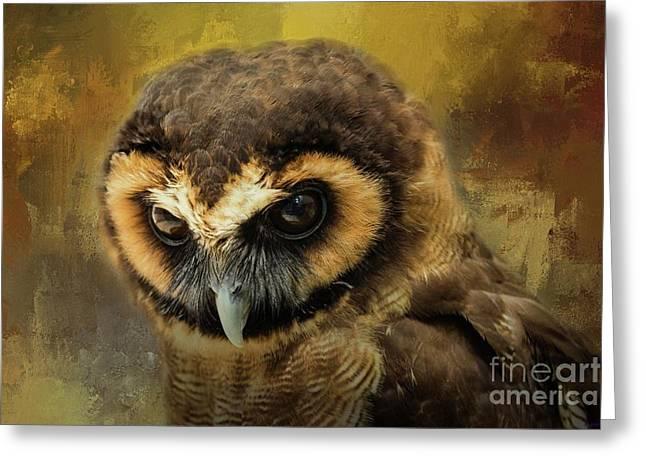 Brown Wood Owl Greeting Card