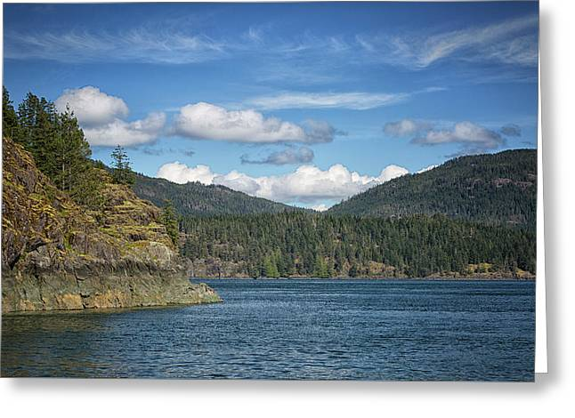 Browns Bay Greeting Card by Randy Hall