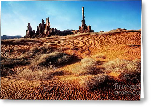 Brush On Dunes Greeting Card by Scott Kemper