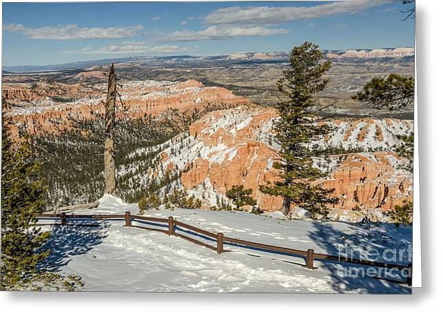 Bryce Amphitheater From Bryce Point Greeting Card