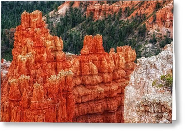Bryce Canyon - Lone Tree Greeting Card