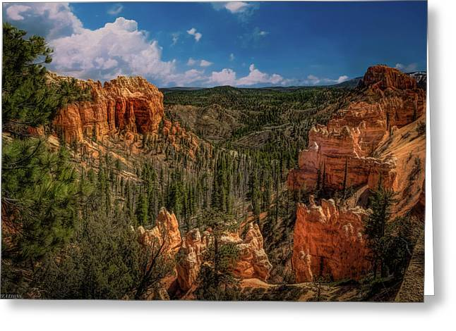 Bryce Canyon From The Top Greeting Card