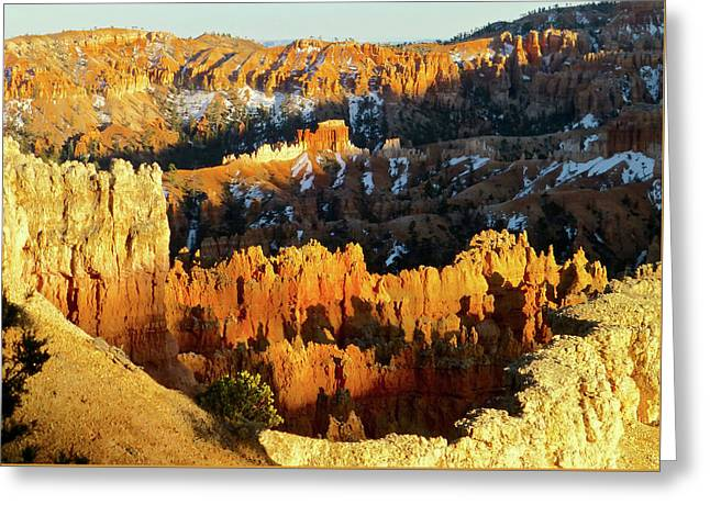 Bryce Canyon Hoodoos Evening Greeting Card by Amelia Racca