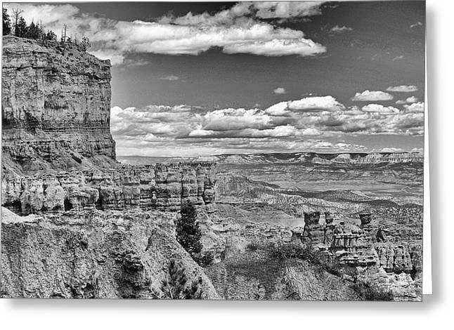 Bryce Canyon In Black And White Greeting Card by Nancy Landry