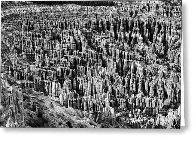 Bryce Canyon National Park Lll Greeting Card by Hideaki Sakurai