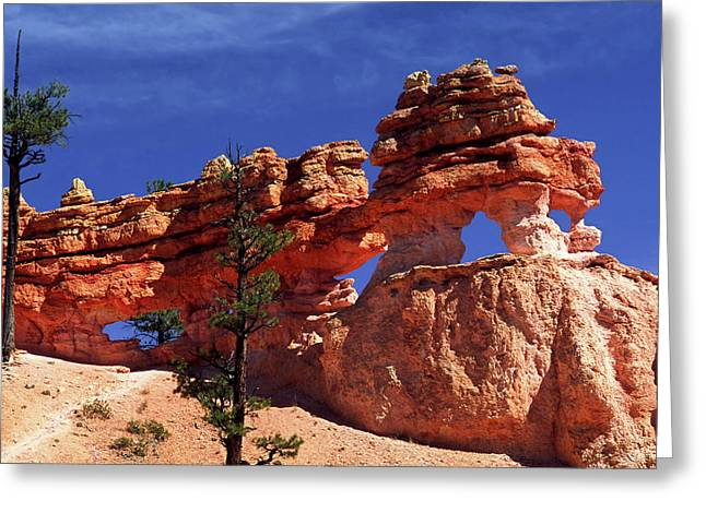 Greeting Card featuring the photograph Bryce Canyon National Park by Sally Weigand