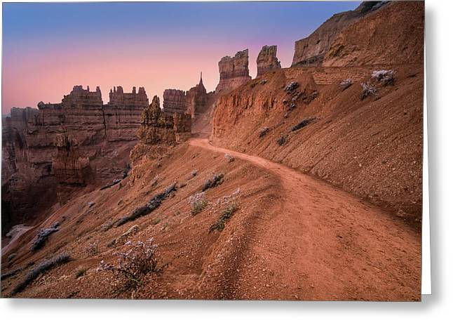 Bryce Canyon Sunset Greeting Card by Larry Marshall