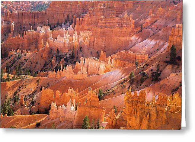 Bryce Glow Greeting Card