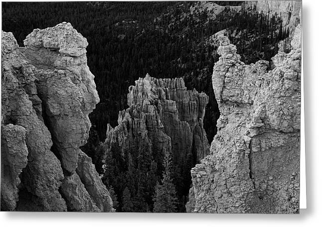 Bryce Canyon Np I Bw Greeting Card by David Gordon