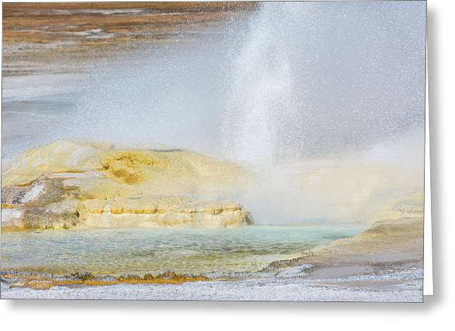 Greeting Card featuring the photograph Bubbling Earth by Colleen Coccia