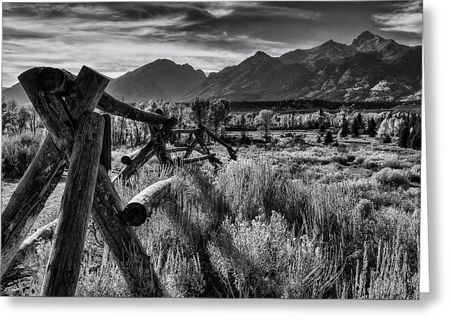 Buck And Rail To The Tetons Greeting Card by Mark Kiver