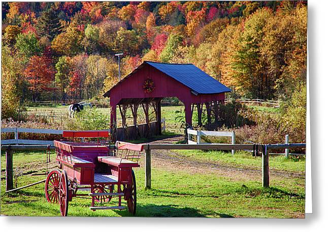 Greeting Card featuring the photograph Buck Board Ready For Fall Colors by Jeff Folger