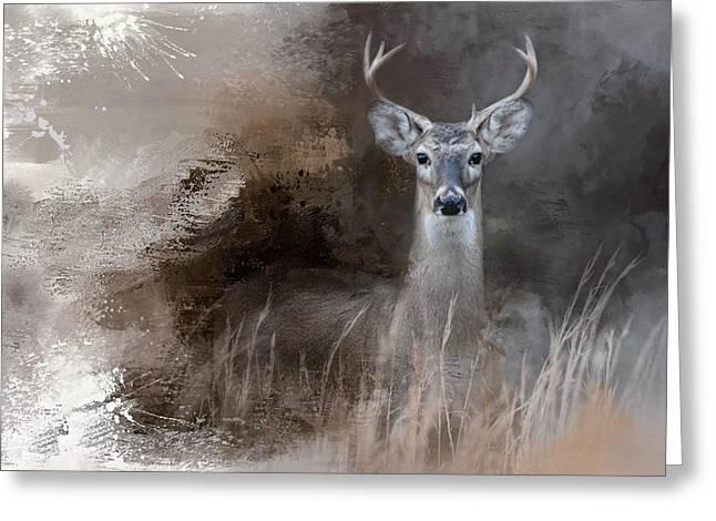 Buck In The Shadows Greeting Card by Jai Johnson