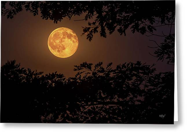 Greeting Card featuring the photograph Buck Moon 2016 by Everet Regal