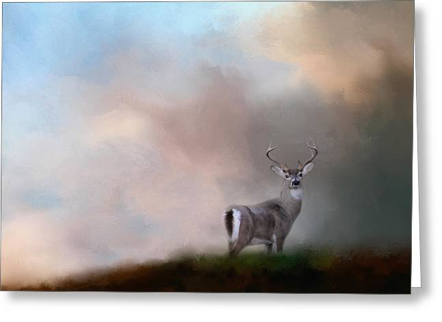 Buck On The Hill Greeting Card by Jai Johnson