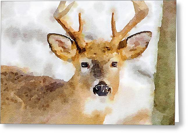 Greeting Card featuring the painting Buck Profile by Steven Santamour