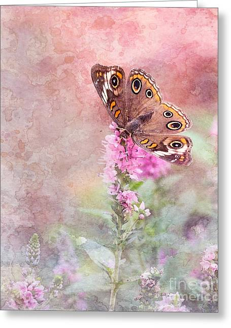 Greeting Card featuring the photograph Buckeye Bliss by Betty LaRue