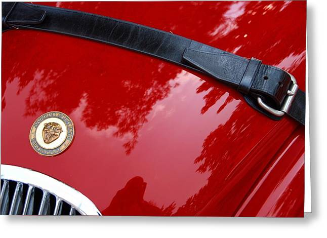 Greeting Card featuring the photograph Buckle Up by John Schneider