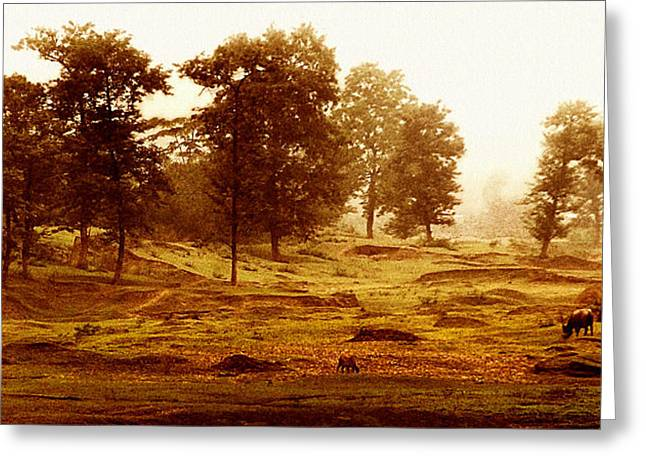 Bucolic Landscape Greeting Card by Joe Bonita
