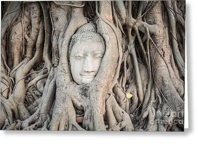 Buddha Head At Wat Mahatat Temple Greeting Card by MotHaiBaPhoto Prints