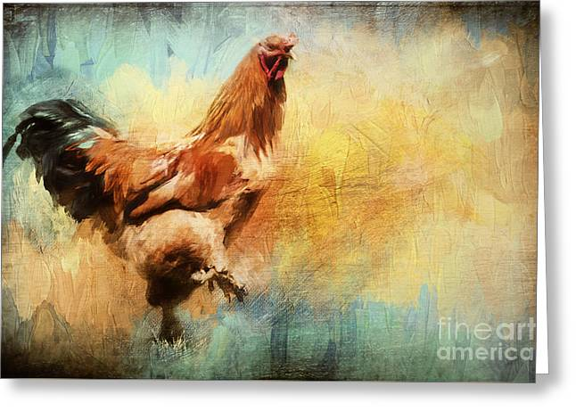 Buff Brahma Mrs. Darwin's Rooster  Greeting Card