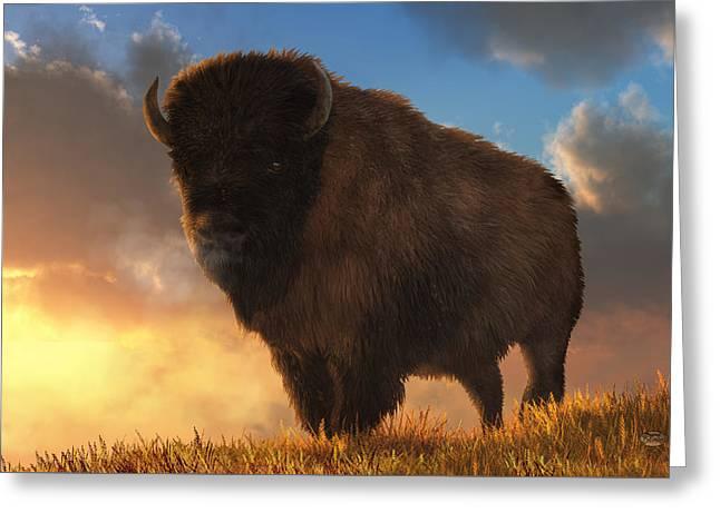 Buffalo At Dawn Greeting Card by Daniel Eskridge