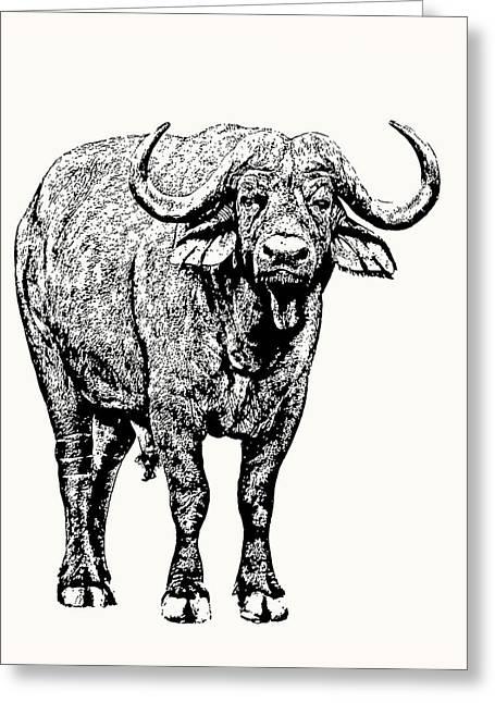 Buffalo Bull, Full Figure Greeting Card