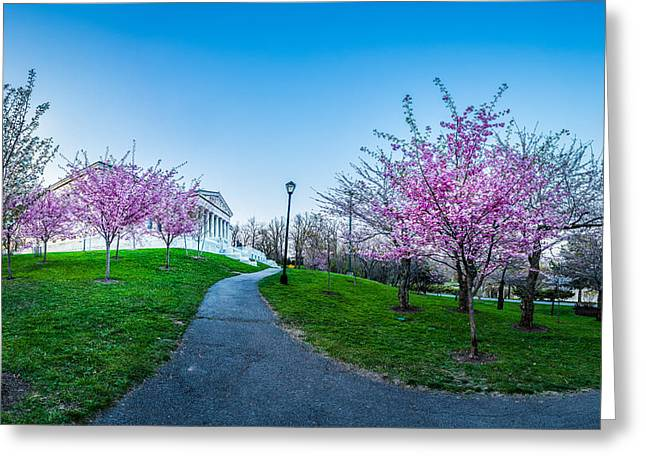 Buffalo Cherry Blossoms 1 Greeting Card