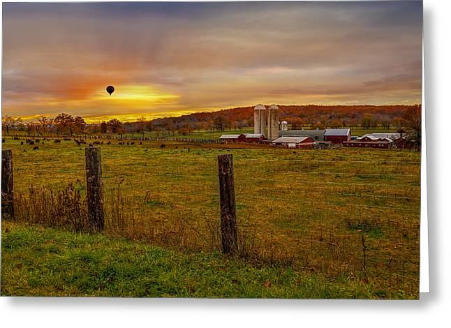 Buffalo Farm Sunset Greeting Card by Susan Candelario
