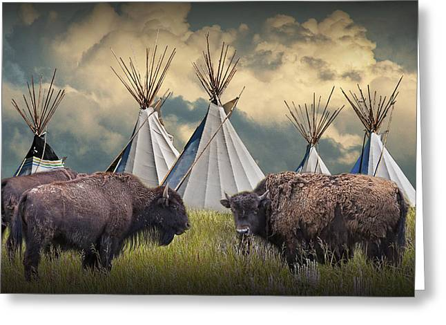 Buffalo Herd On The Reservation Greeting Card by Randall Nyhof