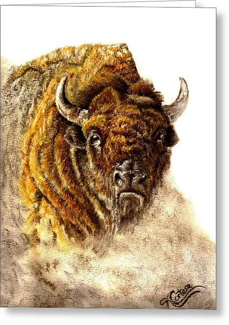 Buffalo Greeting Card by Karen Cortese