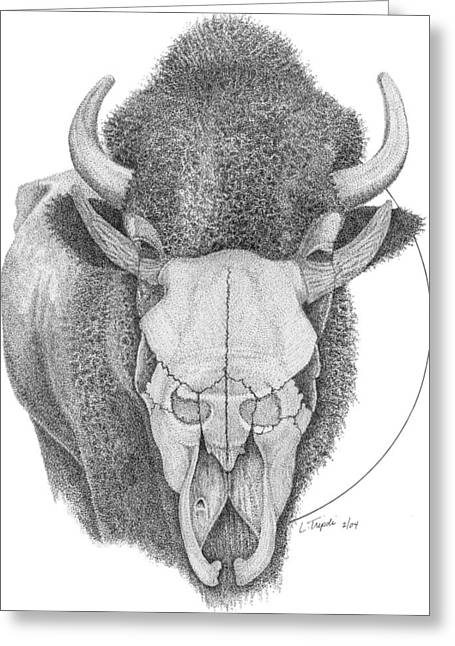 Buffalo Greeting Card by Lawrence Tripoli