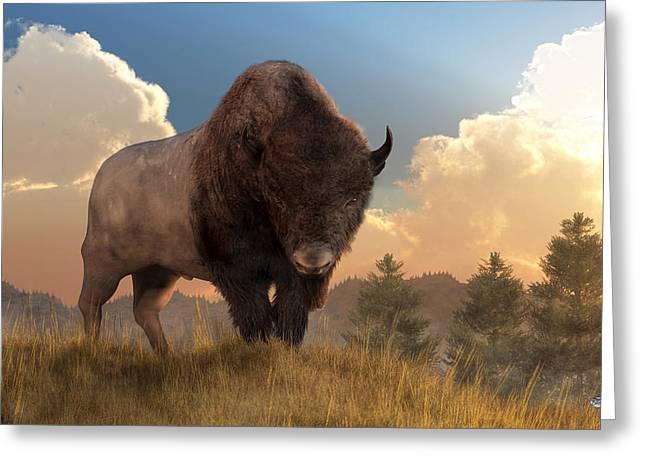 Buffalo Sunset Greeting Card by Daniel Eskridge