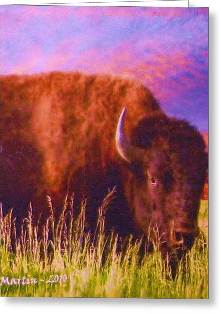 Buffalo Sunset Greeting Card