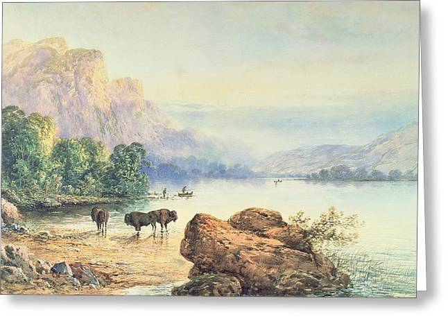 Buffalo Watering Greeting Card by Thomas Moran