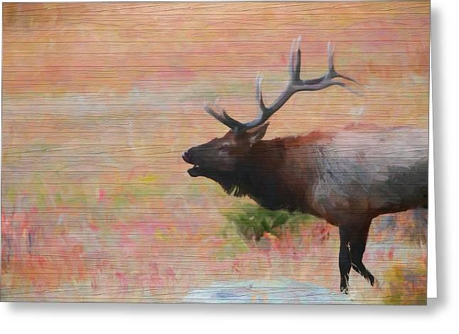 Bugling Elk Wood Panel Greeting Card