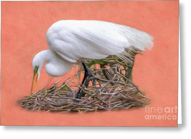 Building A Nest Greeting Card by Marion Johnson
