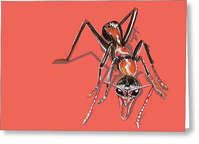 Greeting Card featuring the painting Bull Ant by Jude Labuszewski