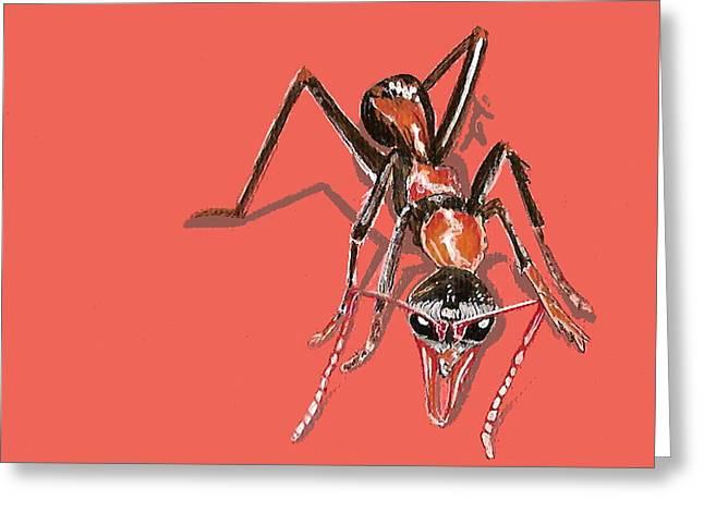 Bull Ant Greeting Card