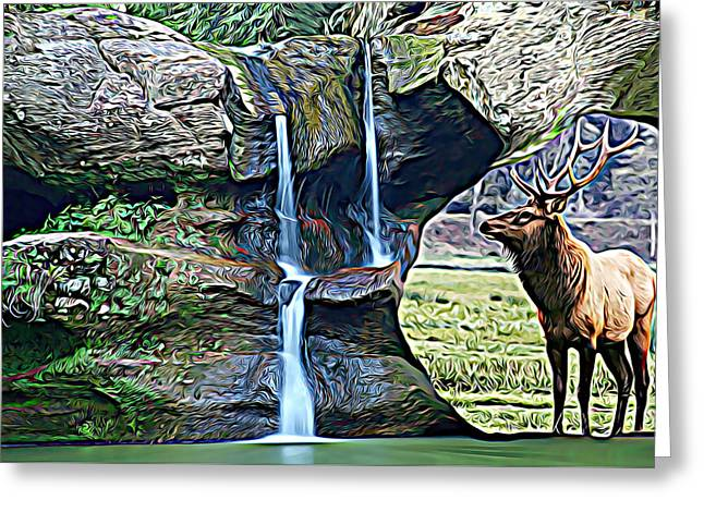 Bull Elk By A Waterfall Greeting Card