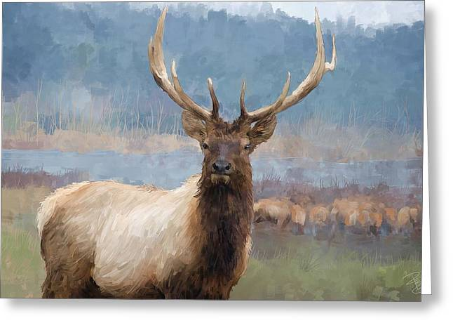 Bull Elk By The River Greeting Card
