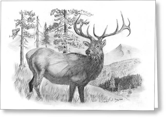 Bull Elk Greeting Card by Russ  Smith