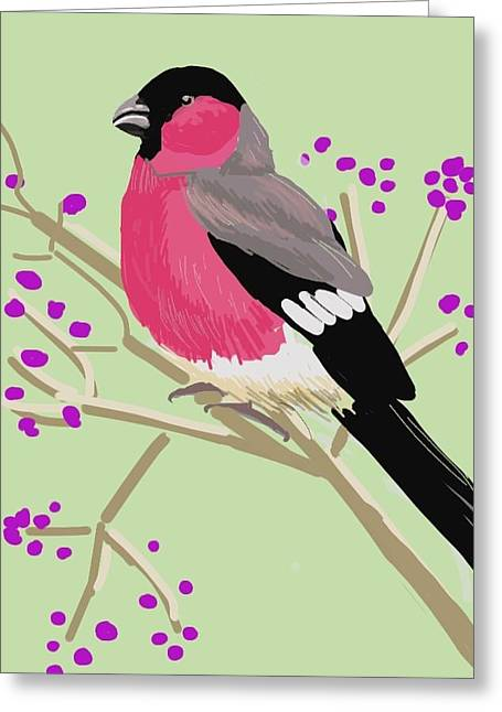 Bull Finch Greeting Card