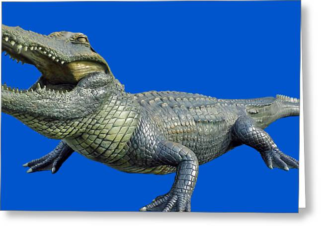 Bull Gator Transparent For T Shirts Greeting Card