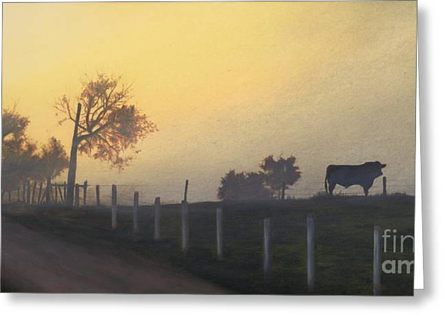 Bull In The Fog Greeting Card