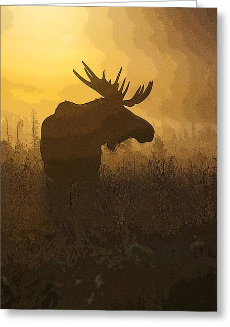 Bull Moose In Fog- Abstract Greeting Card by Tim Grams